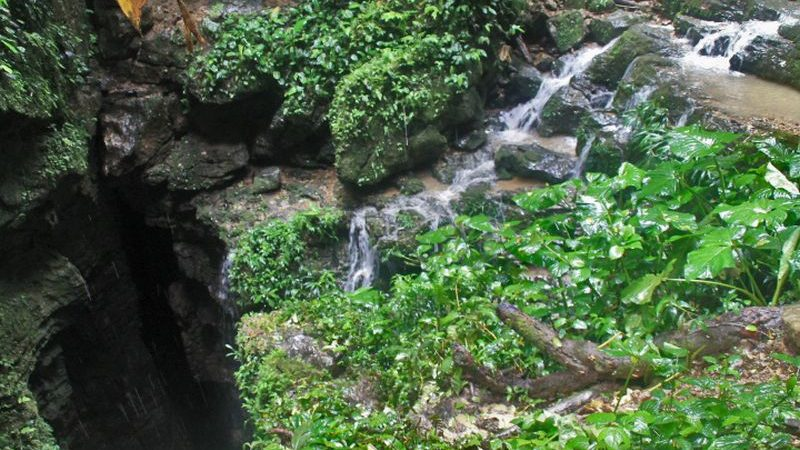 Entrance to the cave of the Tayos