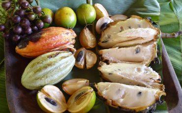 En la amazonia puede encontrar frutas tropicales deliciosas.