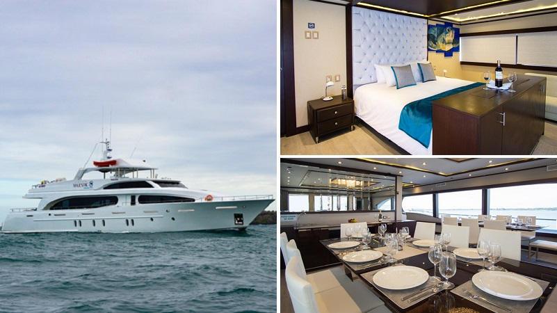 Descubra las Islas Galapagos en un maravilloso crucero con el luxury catamaran Grand Mejestic