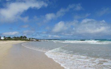 Durante su Island Hopping usted puede disfrutar de playas maravillosas.