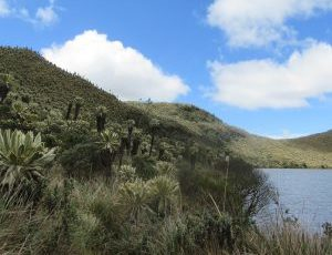 Descubra el paisaje especial de la reserva El Angel.