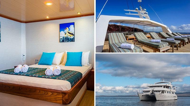 Descubra las Islas Galapagos en un maravilloso crucero con el catamaran superior Seaman.
