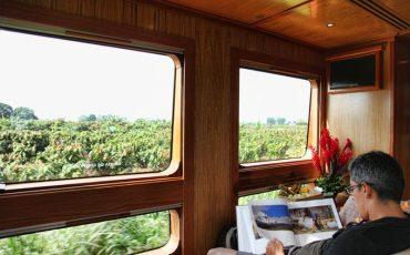 Disfruta de vista espectacular desde las ventanas del tren crucero.