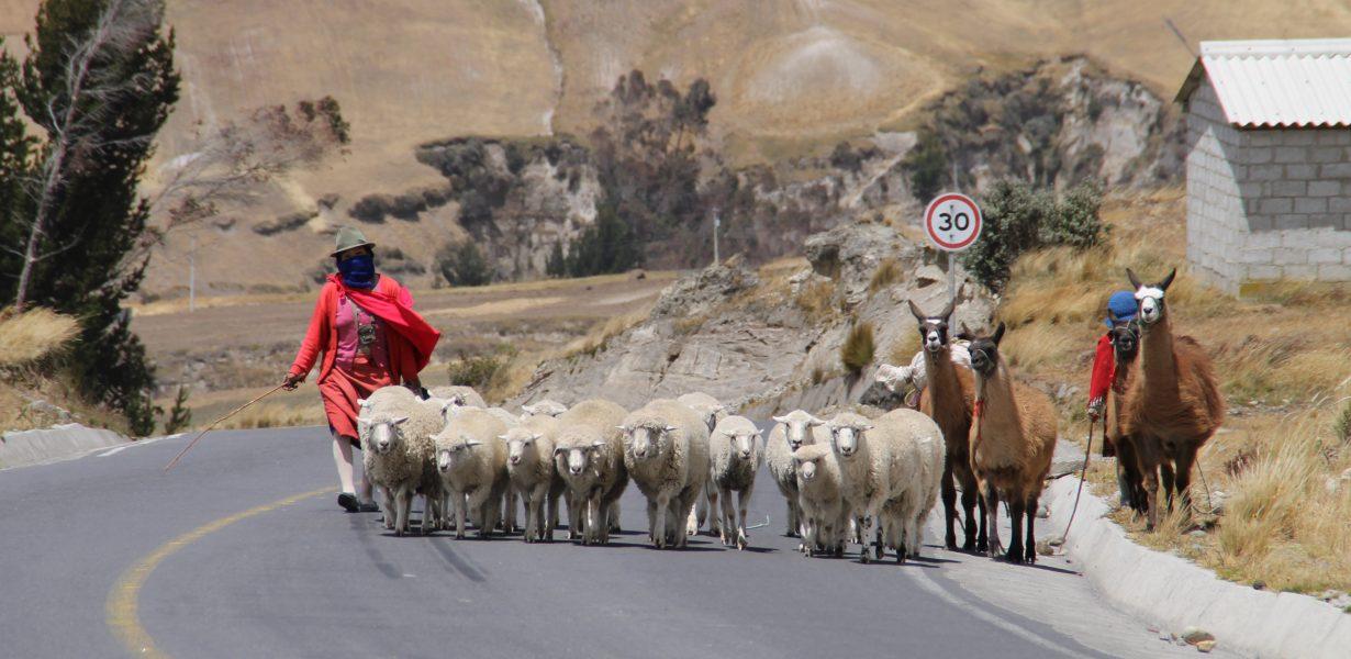 Conozca los Andes ecuatorianos de diferentes maneras.