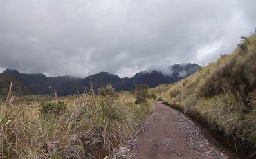 Descubra el paramo ecuatoriano caminando.