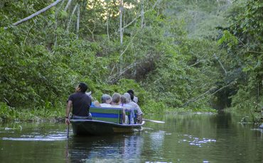 Usted va a explorar la belleza de la reserva Cuayabeno a bordo de una canoa.