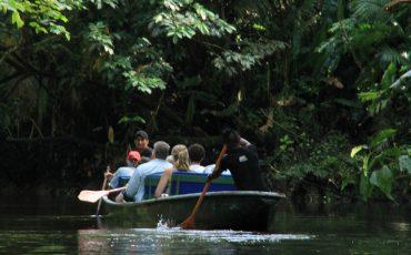 Durante su estadia en el parque Yasuni va hacer varias excursiones en canoa.