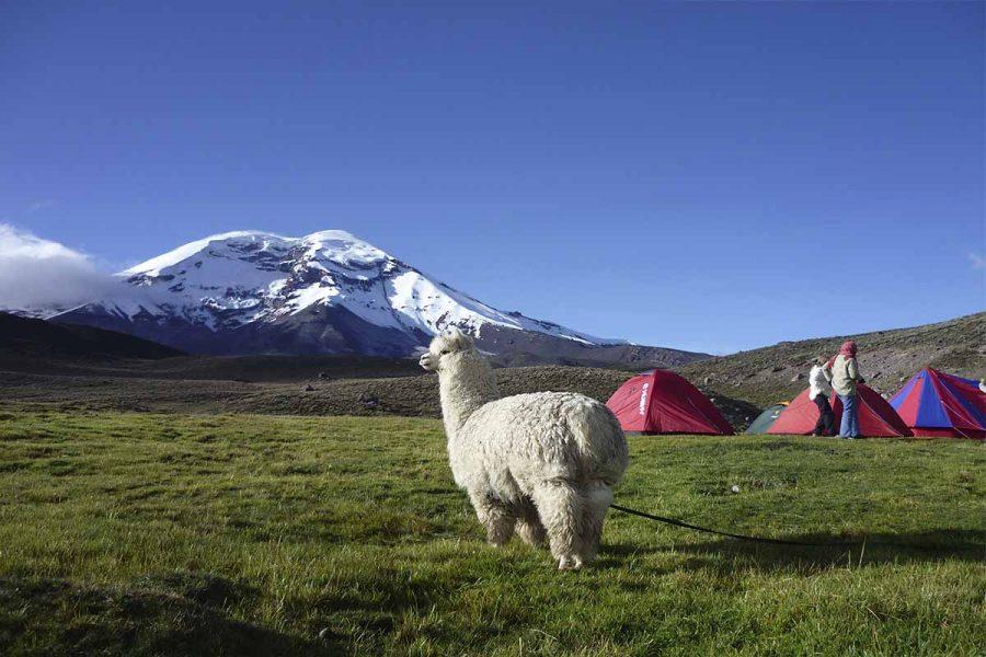 Descubra los Andes de Ecuador durante caminataso trekkingcon SOLEQ.travel.