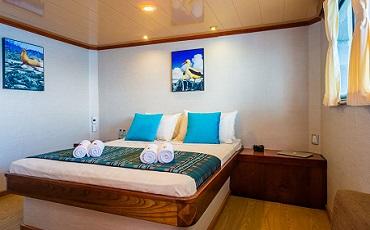 Las cabinas matrimoniales de Seaman son amplias y comodas.
