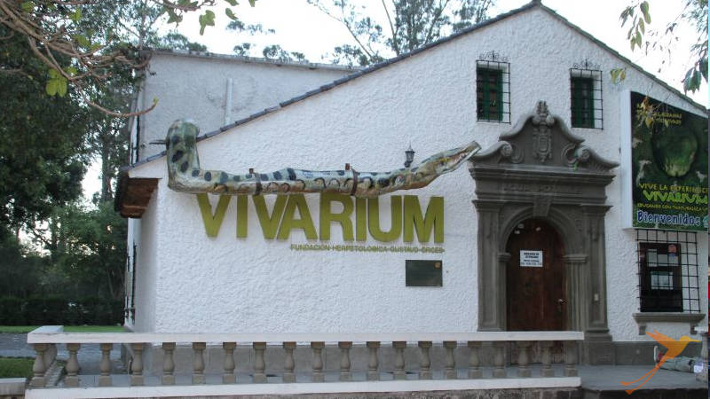 In the Carolina Park you can find the Vivarium