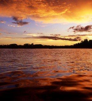 Amazon Ecuador Tours