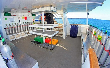 Aqua-dive-plattform