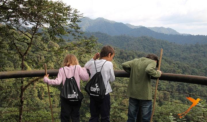 Aussichtspunkt Mashpi Lodge Ecuador