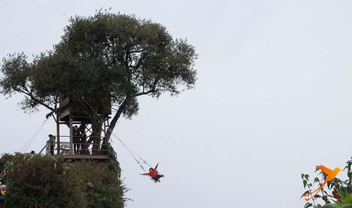 Swing Casa del Arbol: ideal for Adventure Tourism