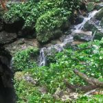 The Tayos Cave is situated in beautiful landscape.