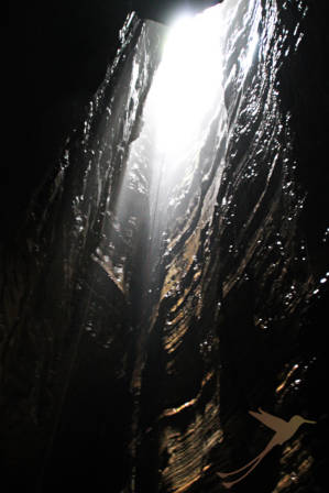 The inside of the Tayos Cave is breathtaking.