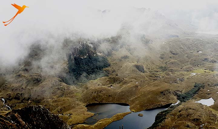 Cuenca - What to do. Visit Cajas National Park