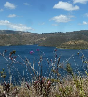 During the Multisport Tour zou will hike around the Cuicocha lake