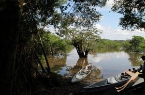 You can explore the Yasuni National Park by boat.