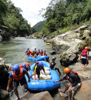In the amayon region you will go on a river rafting adventure.
