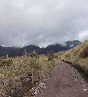 You are going to hike in the Cayambe-Coca ecological reserve.