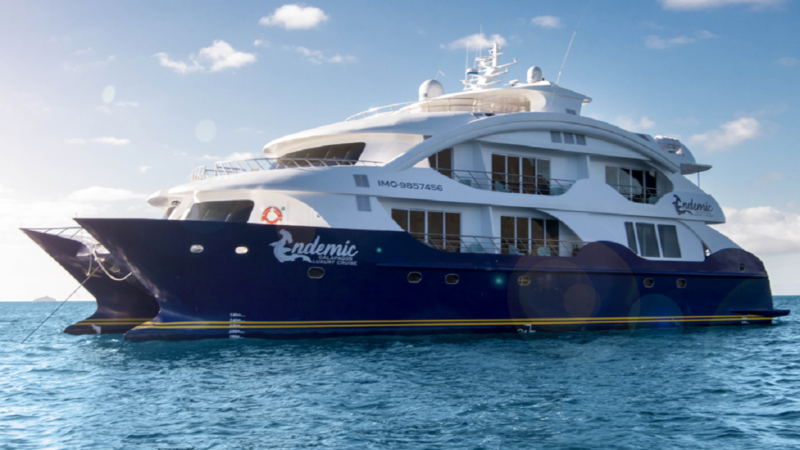 Enjoy a cruise at the Galapagos Islands with the luxury catamaran Endemic.