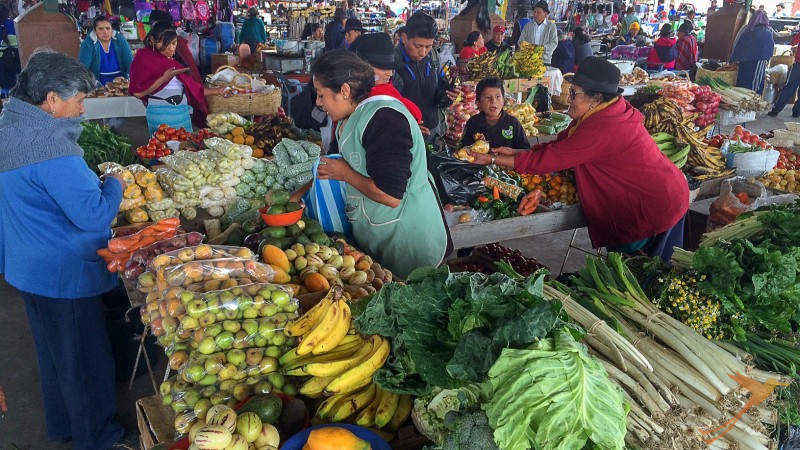 In Ecuador you can find numerous exotic fruits.
