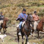 Discover the Andes on horseback.
