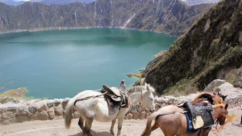 If you want you can hire horses to get down to the lake.