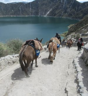 On horseback you can ride down to the crater lake