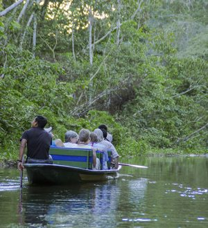 A boat ride on the Cuyabeno river is a real adventure.