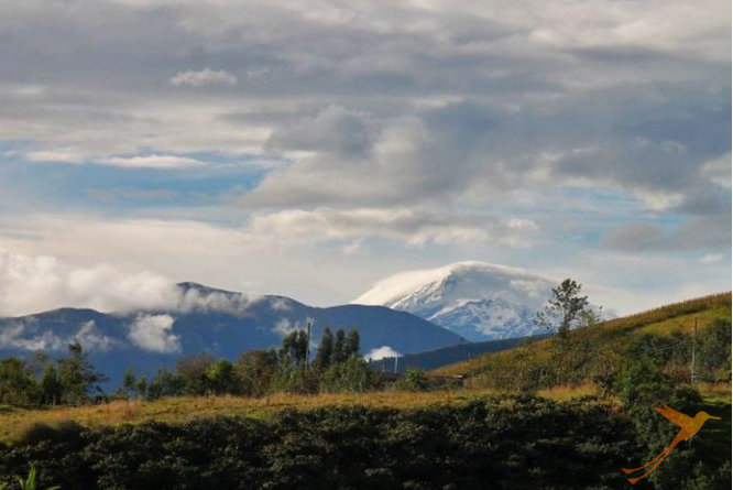 Enjoy great views of the Cayambe volcano