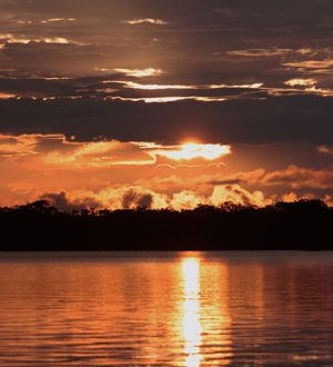 Enjoy beautiful sunsets over the Cuyabeno River.