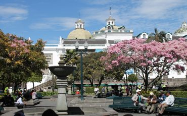 Plaza grande is the central point of Quito's historic center.