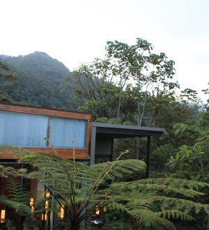 Mashpi is a luxury lodge in the ecuadorian cloud forest.