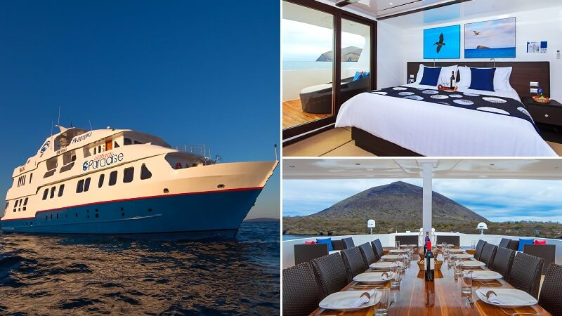 Natural Paradise is a first class yacht for amazing Galapagos cruises - check out our last minute offers.