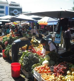 You visit the famous colorful market of Otavalo during the Ecuador Nature Tour.