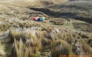 Enjoy the amazing paramo landscape during the Condor trek