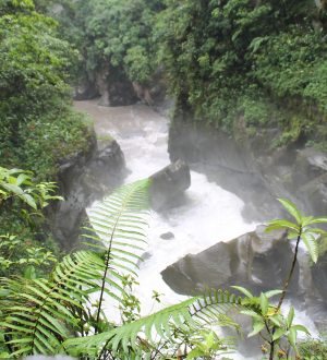 You can visit the waterfall Pailon del Diablo when you drive to Baños.