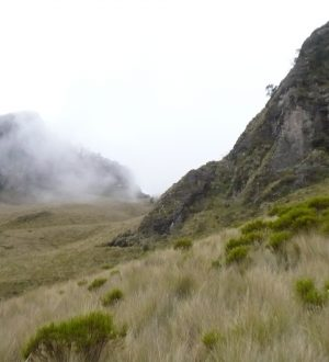 Hiking up the Pasochoa is training for the Cotopaxi Climbing tour