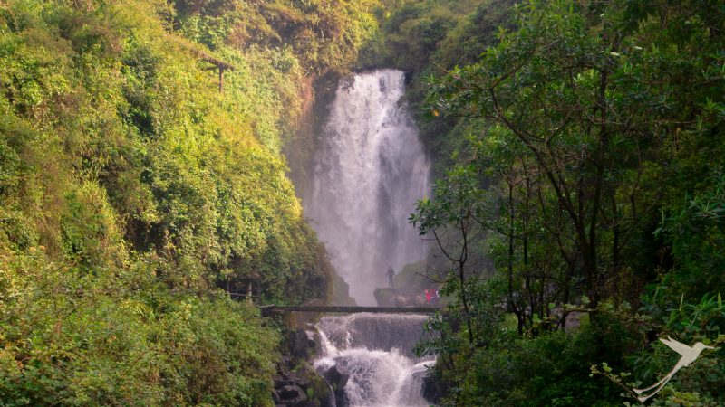 When you are in Otavalo you should visit the Peguche waterfall.