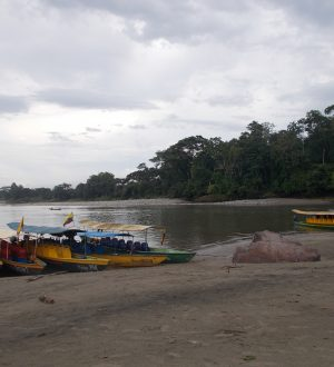 The river beach of Puerto Misahuali is wide and sandy.