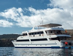 The Seastar Journey is a luxury catamaran that offers unforgetable cruises to the Galapagos Island