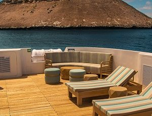 Relax on the comfy sundeck of Galapagos Endemic.