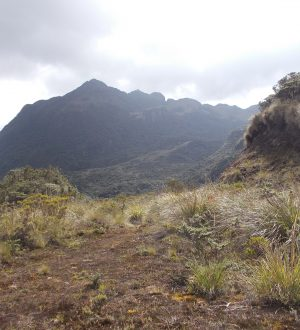 In Papallacta you can hike and later relax at the hot springs.