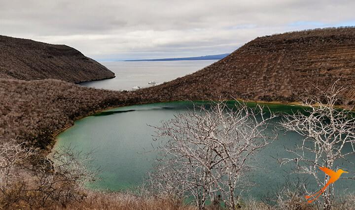 Tagus Cove Galapagos Cruise