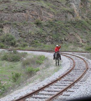 Discover Ecuador on a tren crucero ride.