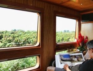 Enjoy views from the windows of the tren crucero