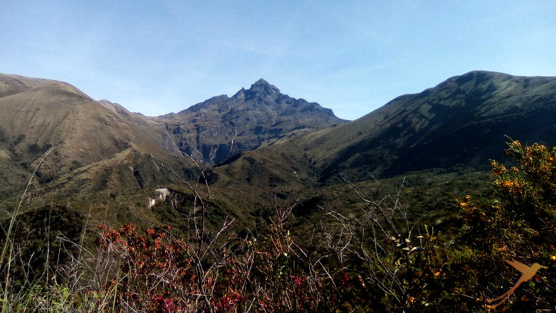 The volcano Cotacachi is the closest to the Cuicocha crater lake.
