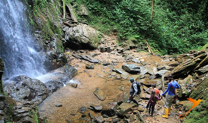 Waterfall near Mashpi Lodge Ecuador